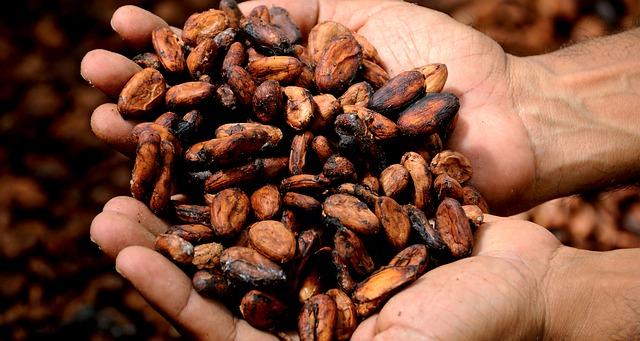 cacao ceremony for men