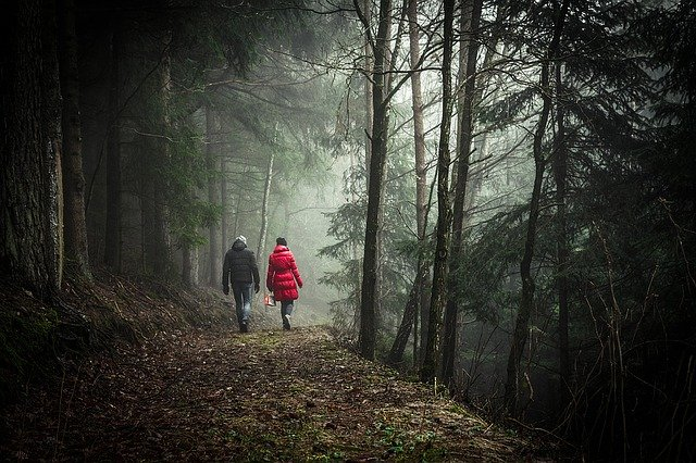 Read more about the article Walking Meditation Instructions