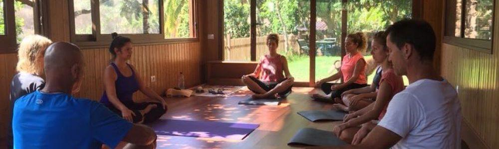 Yoga Retreats For Beginners