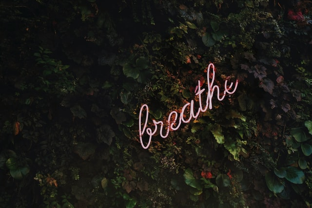 Read more about the article How To: Yogic Breathing Technique